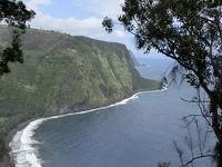 ハワイ島&オアフ島4泊6日初めてづくしの旅【5】 ハワイ島2日目ヒルトンワイコロアビレッジの朝食後、ワイメアファーマーズマーケットとワイピオ渓谷へ