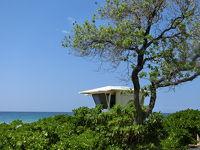 ハワイ島&オアフ島4泊6日初めてづくしの旅【6】ホノカア散策後テックスドライブインで昼食、ハプナビーチにちょっとだけ立ち寄り