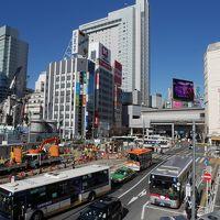 高級住宅地公園めぐり 奥渋谷を歩く