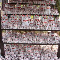 せたがや梅まつり@羽根木公園〜井伊家の菩提寺(招き猫の寺)・豪徳寺へ