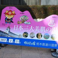 かんぽの宿 栃木喜連川温泉(日本三大美肌の湯)