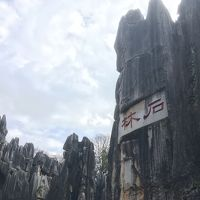 奇景!石林!雲南 中越国境の旅 4日目 (昆明 元陽 河口 ラオカイ サパ )