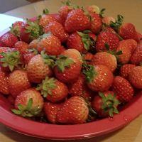 まだまだ寒い釜山で毎日イチゴをいただきます♪