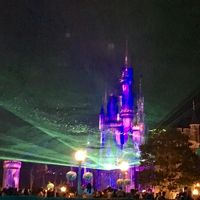 大人も楽しめるディズニーランド2017〜夜の部