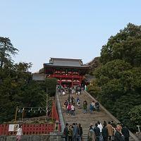 横浜〜鎌倉旅行「食べて勉強して食べて」3日目
