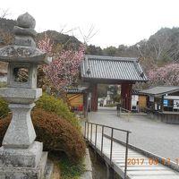 観心寺と千早城を巡る