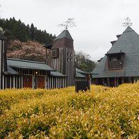 2017年4月 週末温泉旅 in 大分  〜 長湯温泉 大丸旅館、ラムネ温泉とお花見