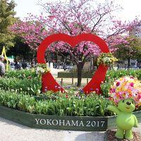 第33回全国都市緑化よこはまフェア2017 「歴史と未来の横浜・花と緑の物語」(その1)