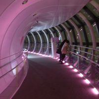 上京して来た息子と東京観光をしました。その1〜夜の東京スカイツリー展望回廊!!(*^O^*)