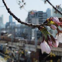 JR発足30年、大阪の電車乗り鉄の旅.その2
