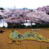 奈良世界遺産フリーきっぷ(奈良・斑鳩・吉野コース)と奈良公園・西の京 -その1-