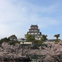 続日本100名城に選ばれたばかりの唐津城に行ってきました/コツコツ貯めたマイルの特典航空券でひとっ飛び