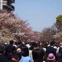 夫婦で久々の大阪1泊2日の旅 恥ずかしいくらいベタな事ばかりしてきました(^_^;)