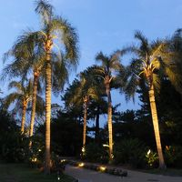 夏の終わりの宮崎へ。1日目(3) 青島ボタニックガーデンの昼と夜。