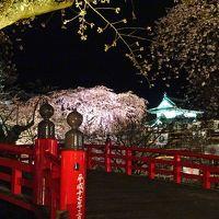お〜っ見事!弘前城の夜桜ライトアップ!からのぉ〜小さな城下町『黒石』散策