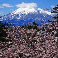 圧巻!!弘前公園のさくらまつり ◇ お城と桜と岩木山の見事なコラボ♪