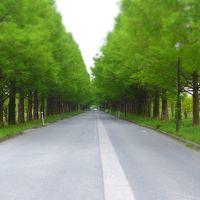 GW!道は大渋滞!だが一人旅に出る!#6 京都→滋賀編