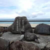 屋久島旅行3泊4日+α 素晴らしい自然、食、そして人〔その3:5/4永田浜の散策とシュノーケル、そして2杯の美味しいコーヒー〕(2017年GW)