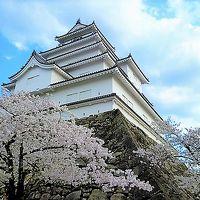 [会津]お城/飯盛山の桜