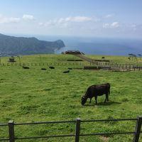 羽田から55分の大自然 東京都八丈島
