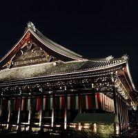 京都 葵祭、西本願寺ライトアップ、嵐山に行かナイト。歩行数28000歩というトライアスロン。初の羽田 伊丹ファーストクラスは食事時間9分という立ち食い蕎麦並み。しかし大和撫子着物でしとやかに挑戦(1/2)