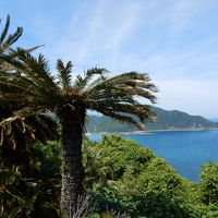 九州最南端・佐多岬(但し工事中)と指宿温泉を楽しむ