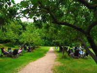 夏の仏→英→独★どこもかしこも印象的な6泊8日二人旅�【2日目:ケンブリッジ】〜大学の街でフットパスをサイクリング&パンティング〜