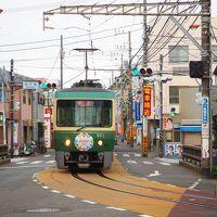 鎌倉 長谷寺のあじさいと江ノ電各駅下車徒歩10分の旅