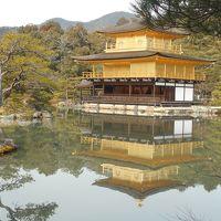 寒かったけど、冬の京都に行ってきた(^^♪