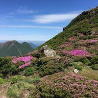 初夏の九重連山・大船山のミヤマキリシマ&日本一の炭酸泉!ラムネ温泉など長湯温泉めぐり