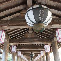 2016年 和歌山・奈良 年末旅行 〜奈良〜