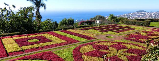 8日目:マデイラ植物園見学(ポルトガル...