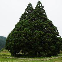 鳥海山〜トトロの木〜大噴水〜熊野神社〜空気神社〜御釜〜山寺〜銀山温泉