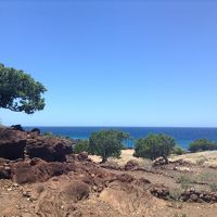 ハワイ離島を巡る〜ハワイ島コナ弾丸旅行〜