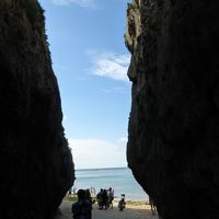 梅雨明けした沖縄本島3泊4日の旅【備瀬のフクギ並木、備瀬のワルミ散策編】
