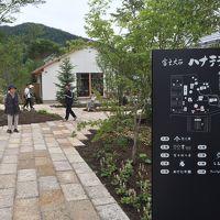 2017年夏、河口湖のラベンダーが全滅?富士大石ハナテラス行って見た