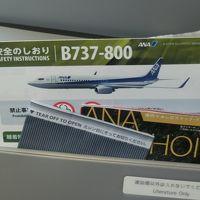 久々のANA機で飛ぶ目的地は、久々の岩国。の旅 〜帰京便は奮発してPREMIUM CLASSで?! NH 638便/地上編〜