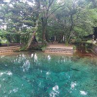 2泊3日 お天気を気にしながらの山口・福岡旅行 [1] 秋芳洞、秋吉台