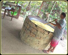 とうとう来ちまった...「地球の秘境:アマゾン〔ジャングルで原住民の家訪問 編〕」...8...(マナウス/ブラジル)