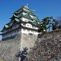 夢で見たから次の日、日帰り名古屋