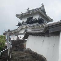 半年ぶりに再開です! 日本百名城No.42掛川城