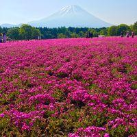 富士山周辺へ1泊2日でソロツーリング♪