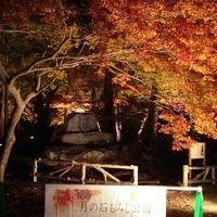 日本《長瀞》一時帰国で小観光
