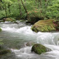 青森・十和田湖・奥入瀬渓流とグルメな旅