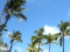 Hawaii * ヒルトン・ハワイアン・ビレッジ・ワイキキ・ビーチ・リゾート