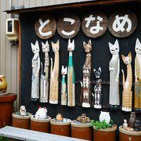 愛知県・常滑「やきもの散歩道」を巡る女子旅〜かわいい器と猫との出会い〜