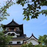 ミスチルライブで久々名古屋へ。ついでに犬山観光1泊2日