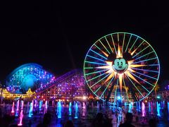 ディズニーランドリゾート&ディズニーカリフォルニアアドベンチャー 2日目