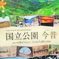 歴博b  「国立公園 今昔」 企画展を見て  ☆観光提灯/ペナントも民俗資料