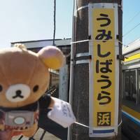 東京 & 横浜 2017